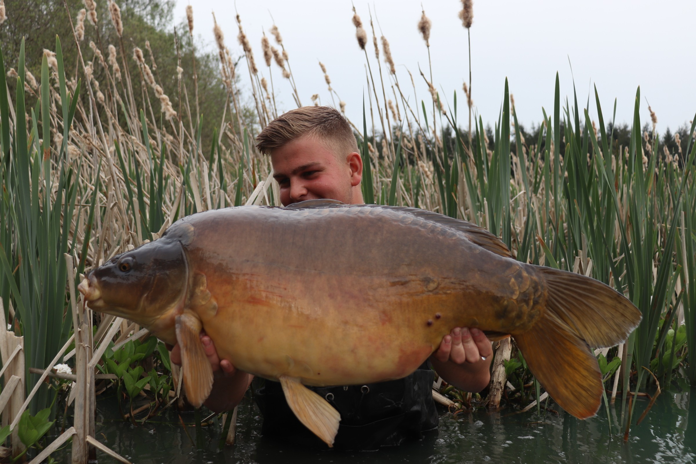 32lb 12oz  caught on
