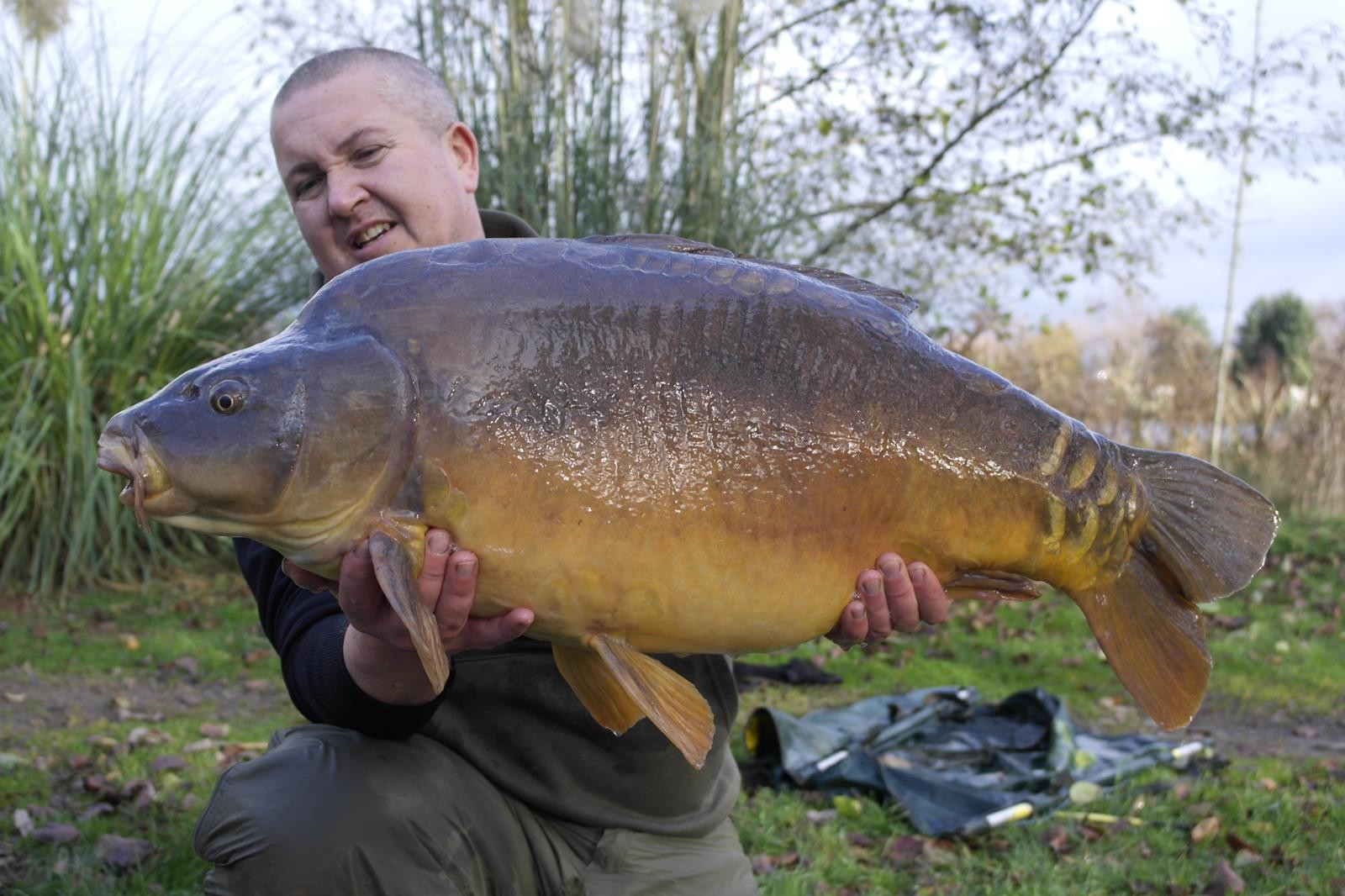 34lb 0oz 'Danny Armitage Mirror'  caught on