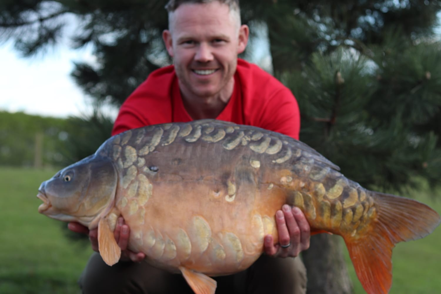 33lb 12oz 'The Turtle'  caught on