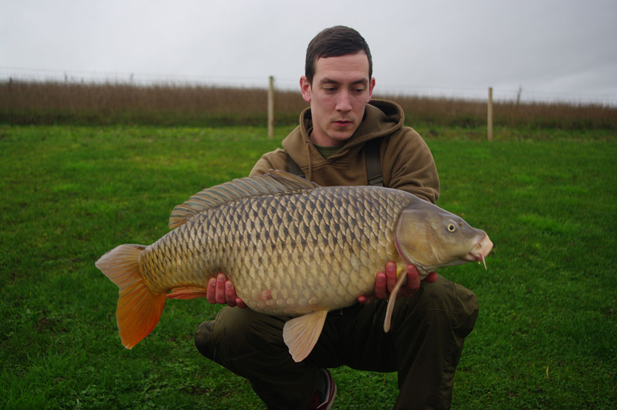 23-08 caught on yellow pop up