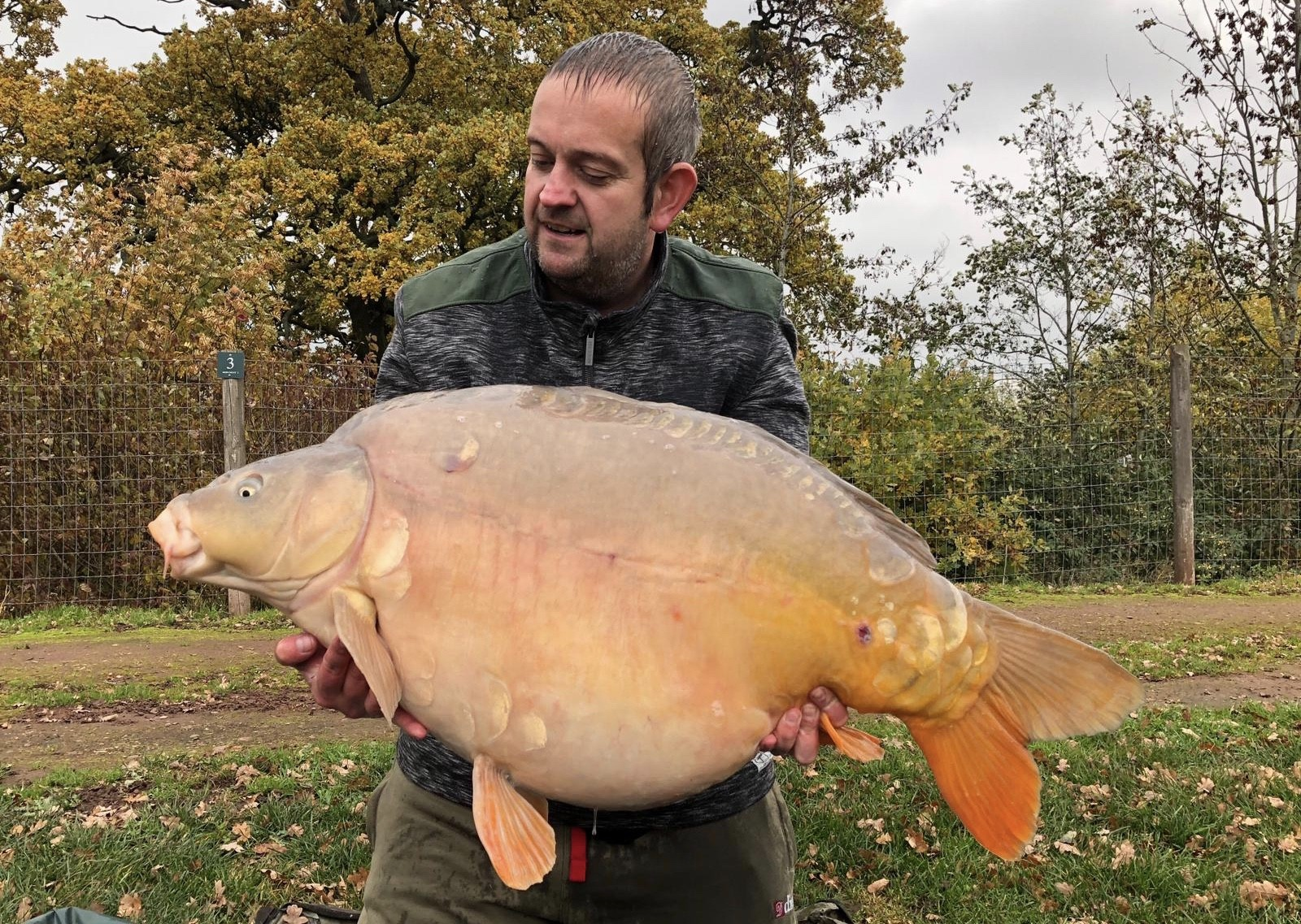 43lb 08oz 'Olly' caught on