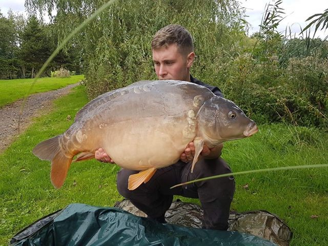 22lb 0oz  caught on The Hive