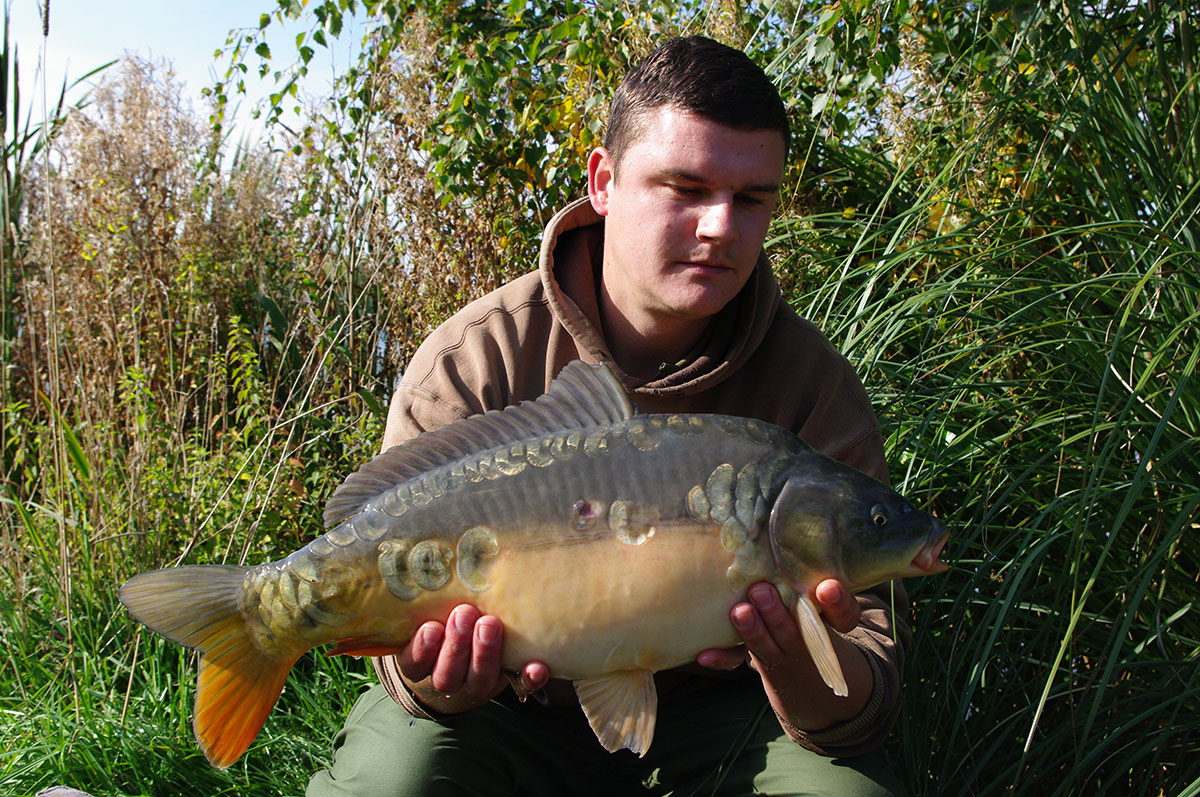 8-00 caught on Boilies