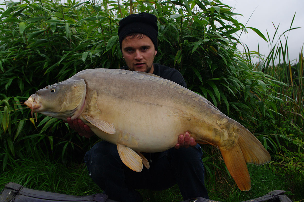 31-00 caught on Nut -Mino, over pellets