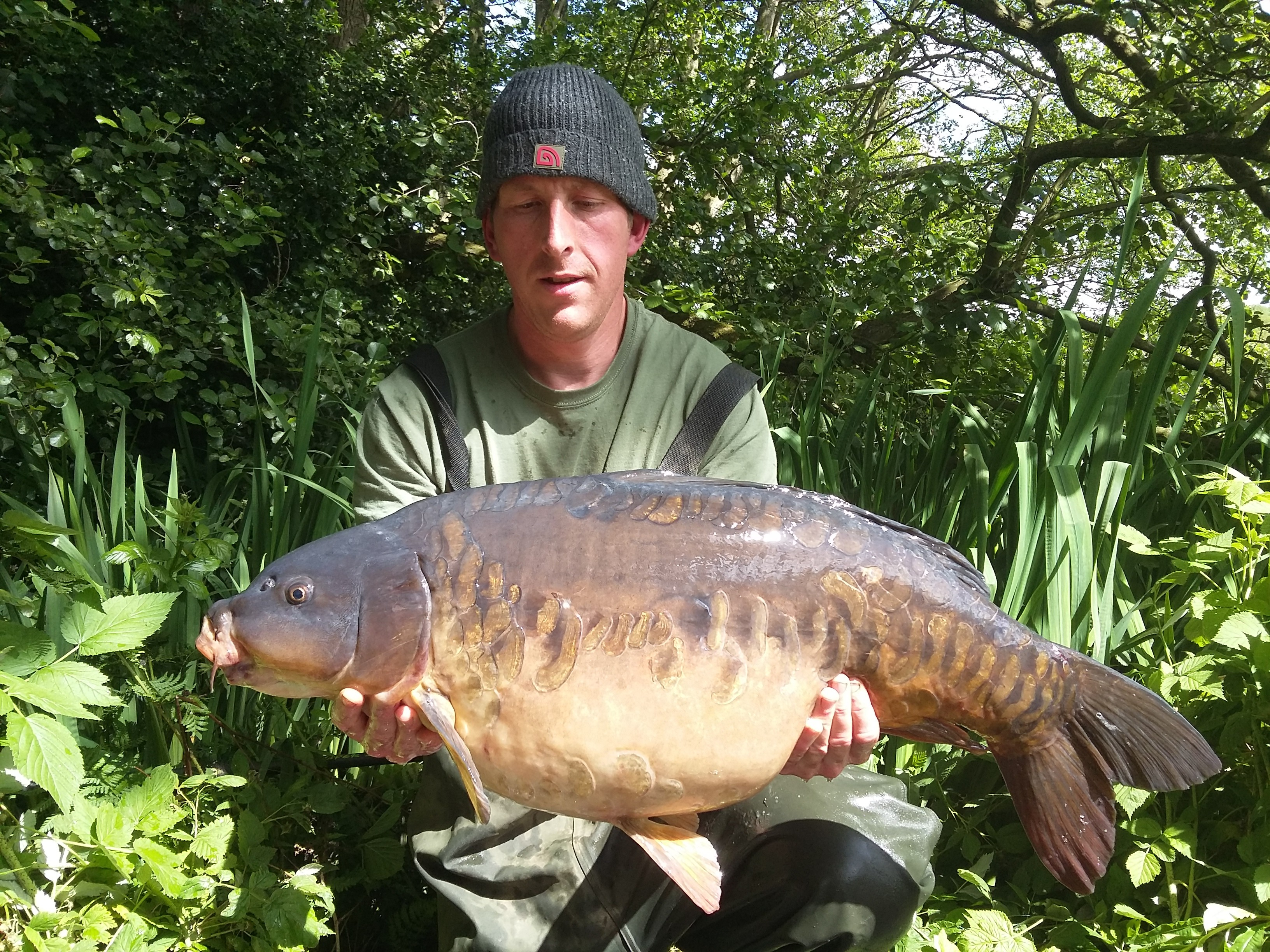 29lb 0oz  caught on