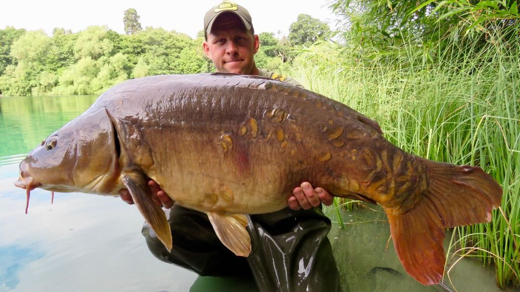 38lb 08oz 'Lord Lucan' caught on