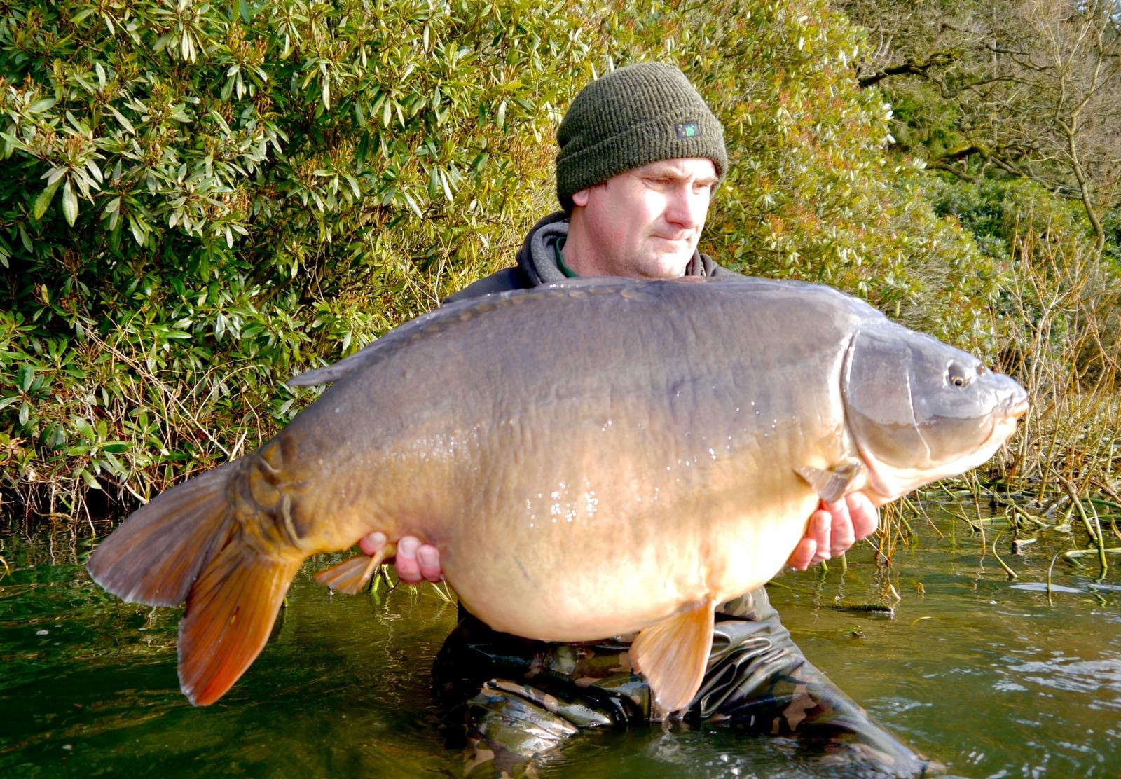 39lb 08oz  caught on