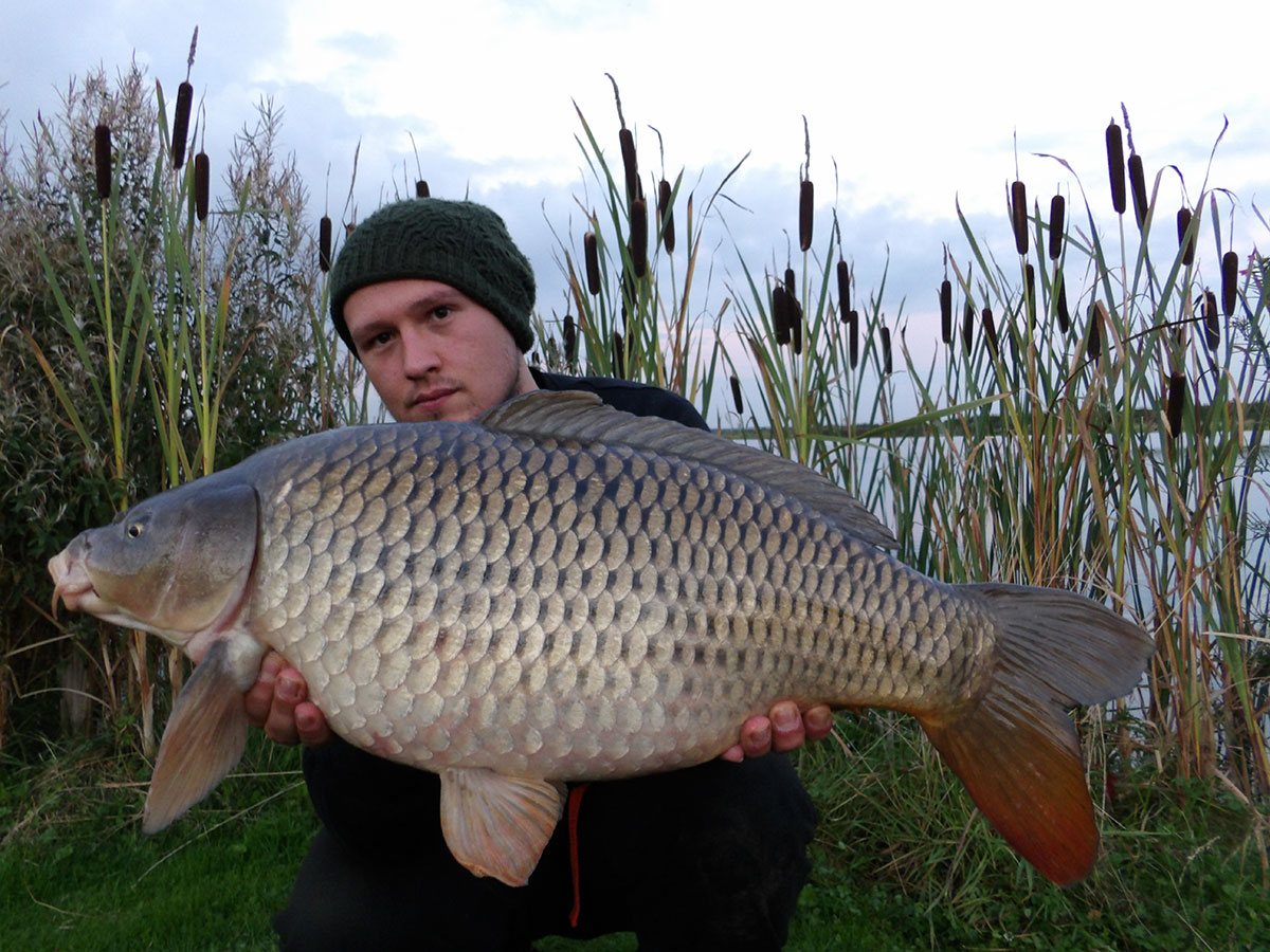 13-00 caught on Maize