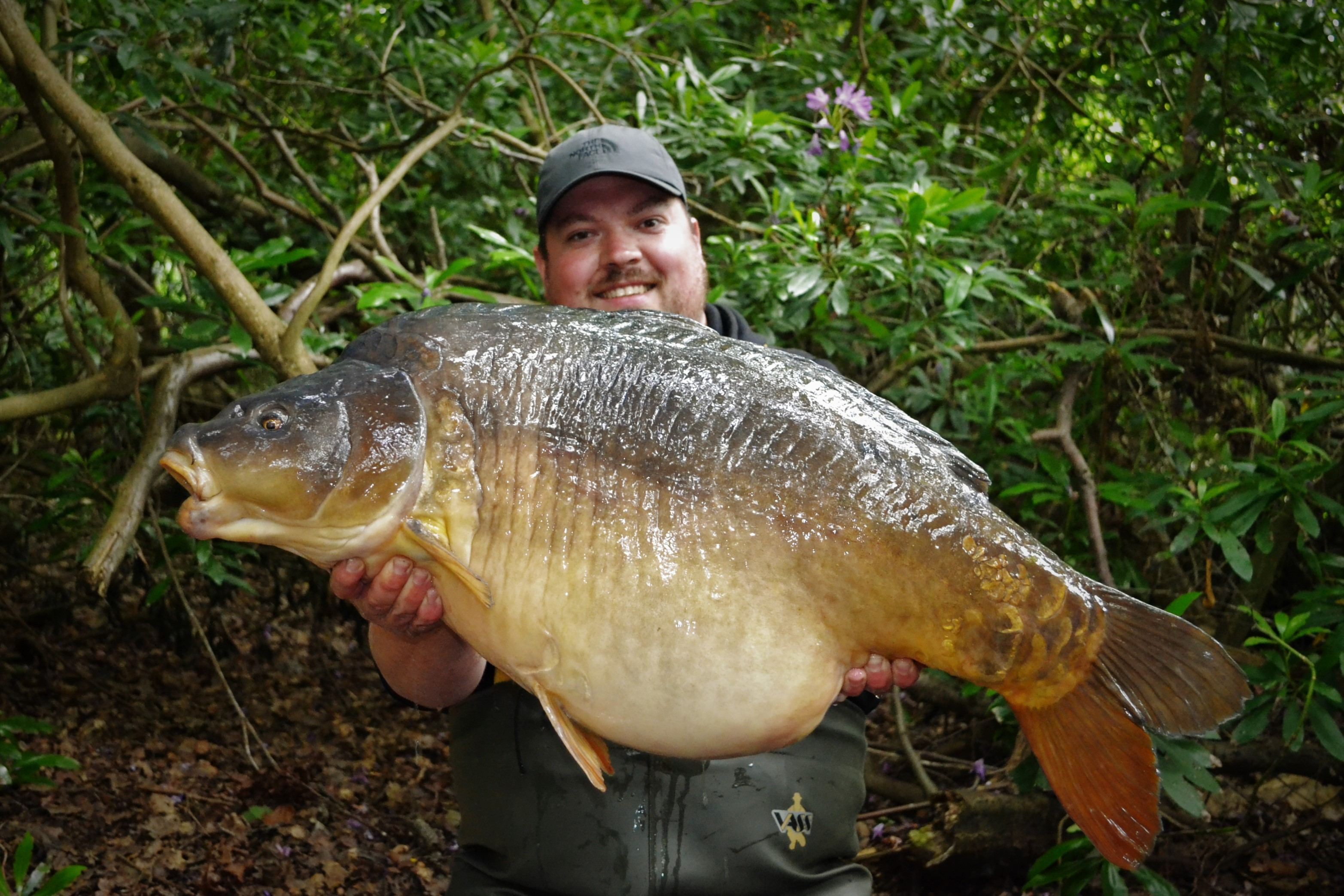 43lb 04oz 'Rod'  caught on