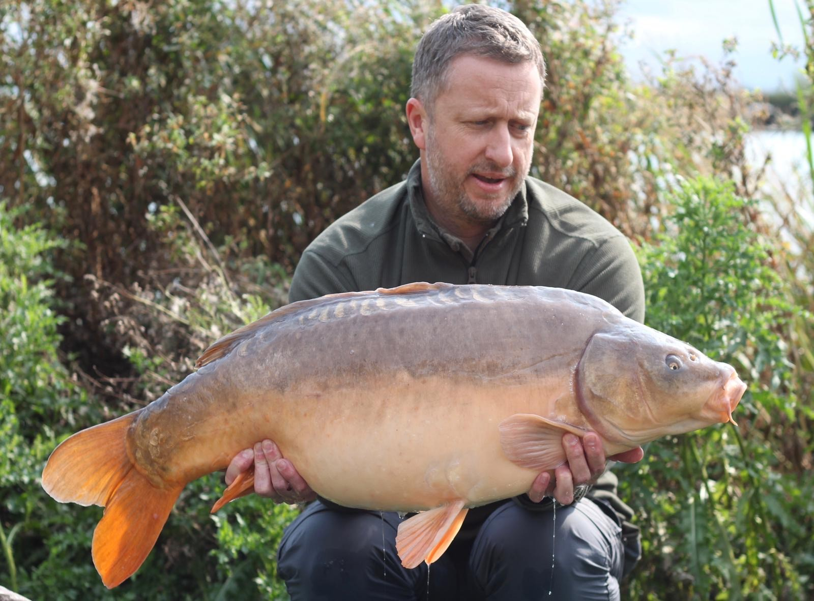 32lb 08oz  caught on