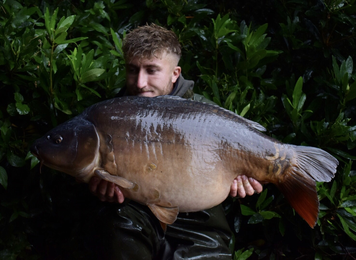 35lb 04oz   caught on