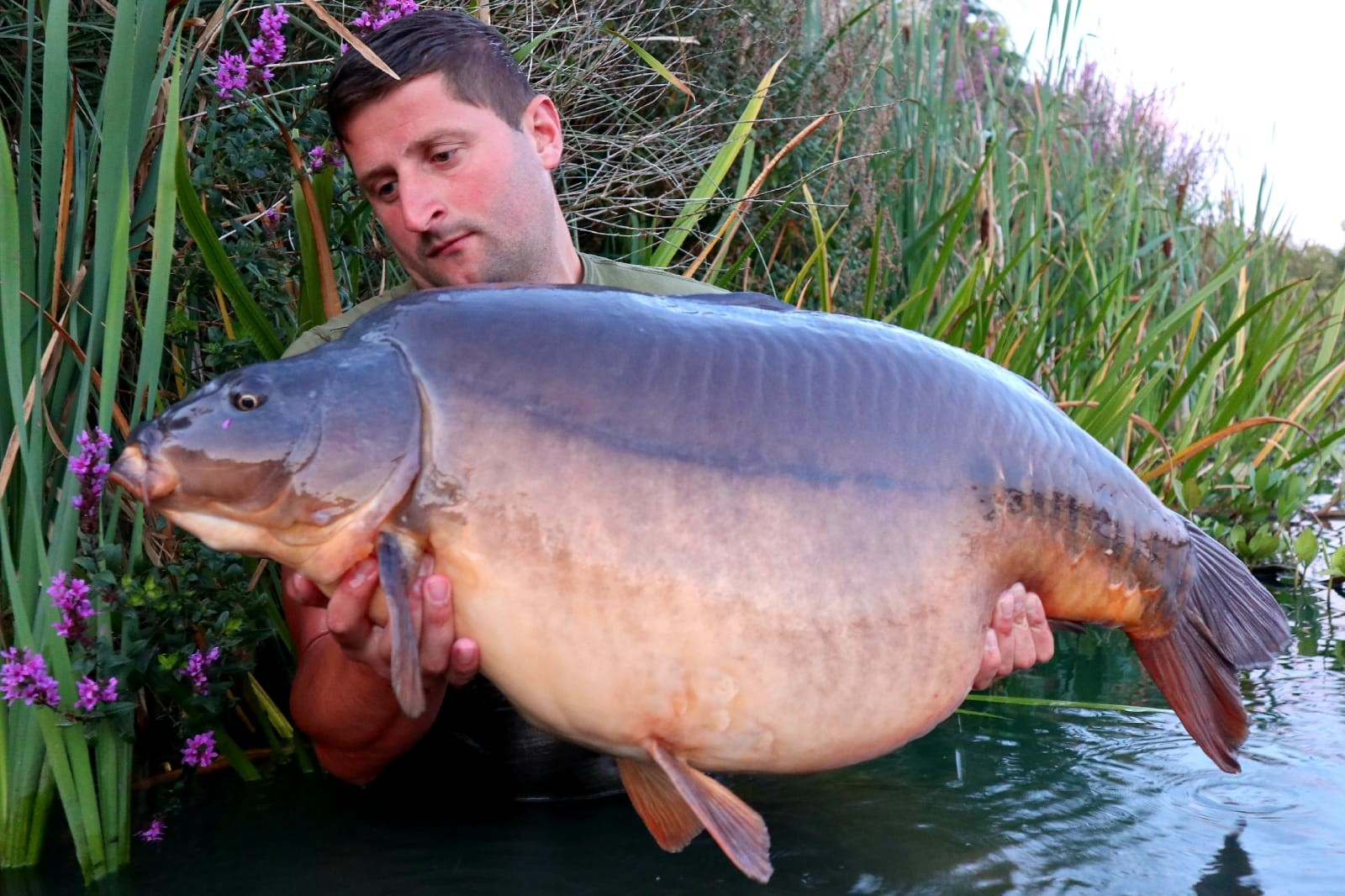 53lb 10oz 'Zac' caught on
