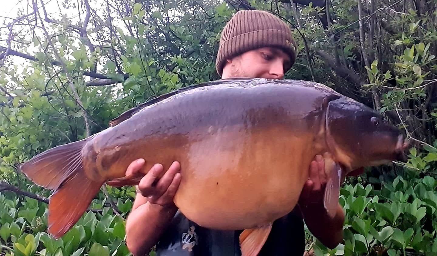 33lb 0oz  caught on