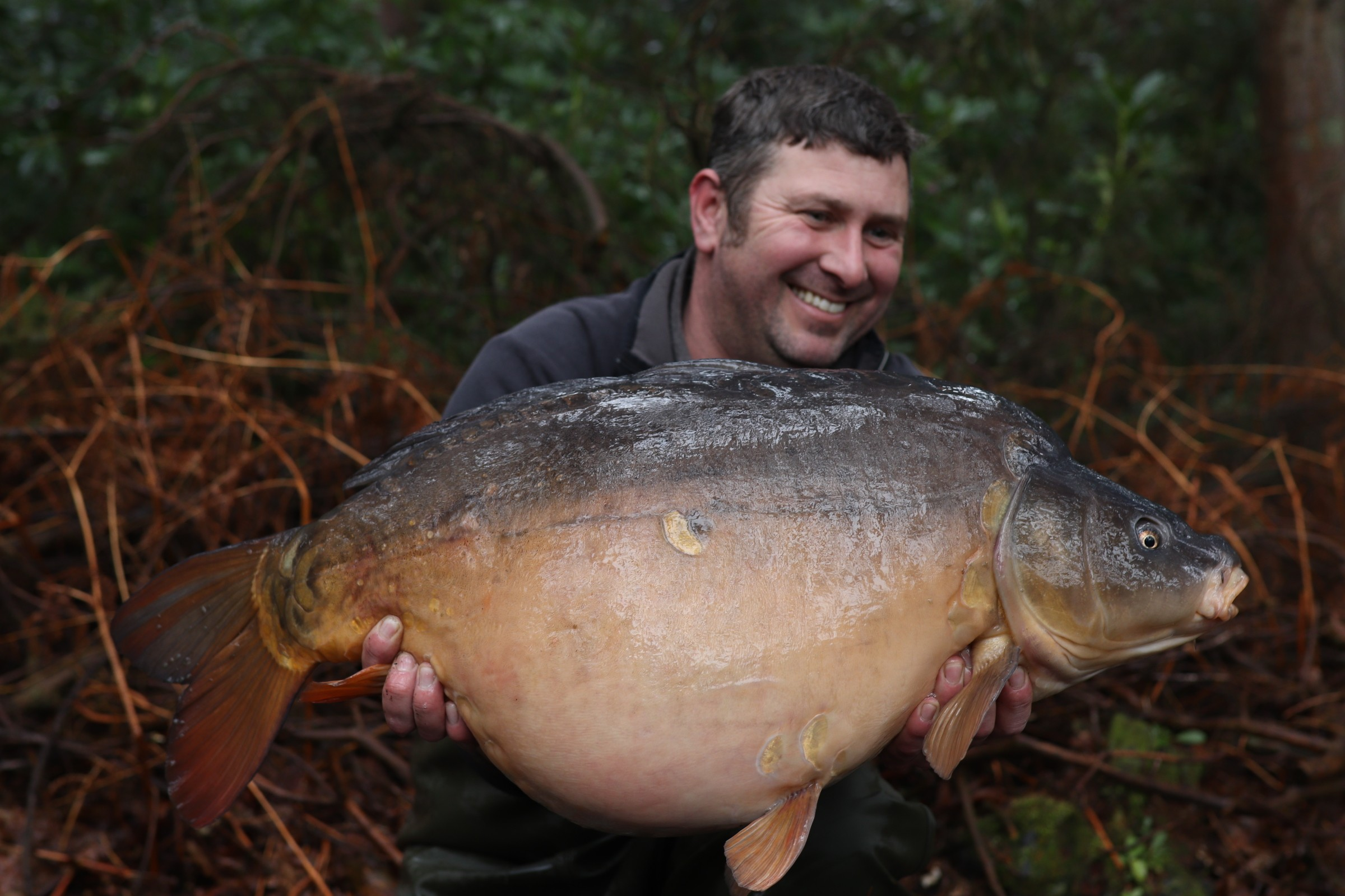 36lb 12oz  caught on Boilies