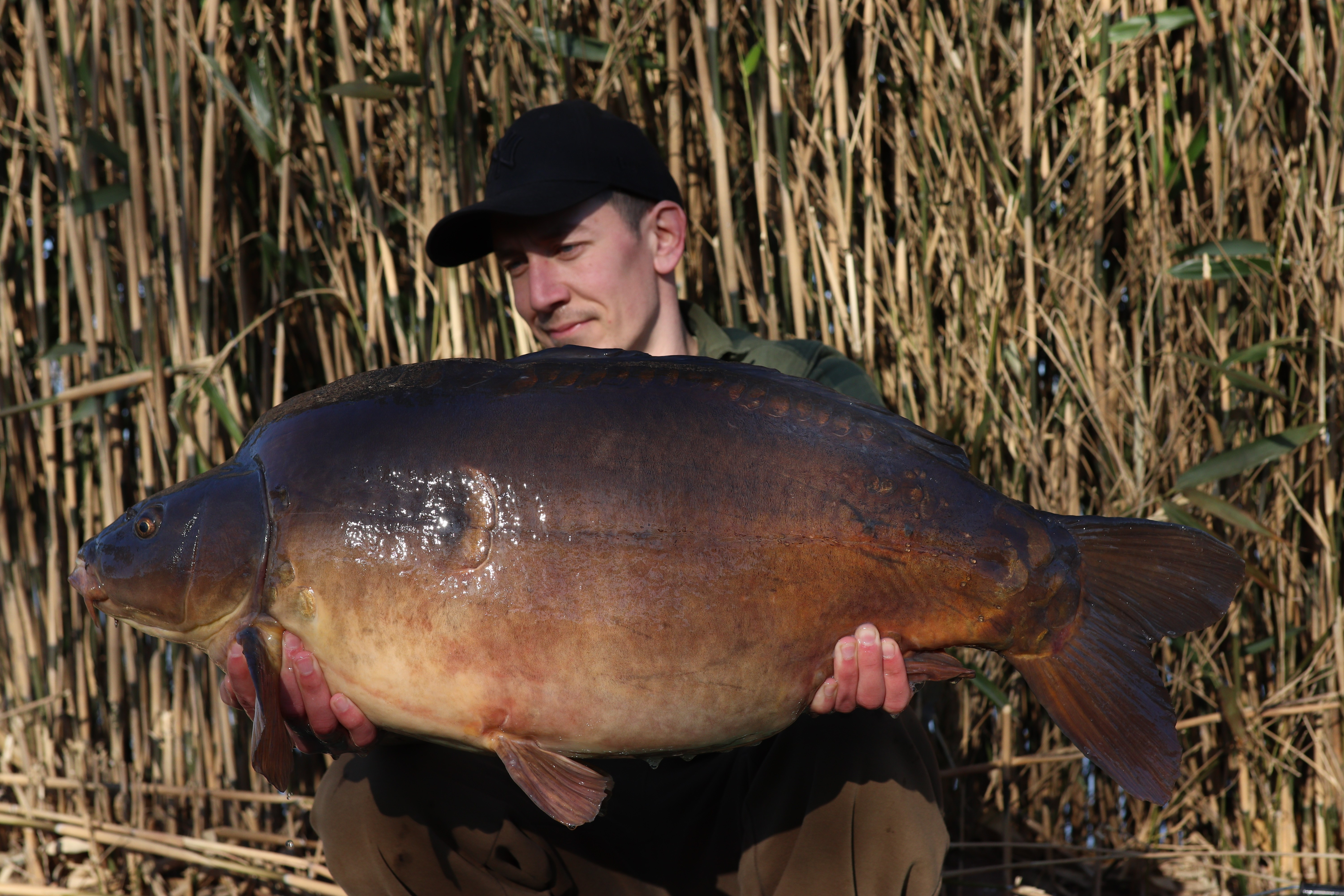 38lb 08oz 'Patch'  caught on